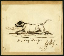 Image of My dog Twig. - Goddard, George Bouverie, 1832-1886